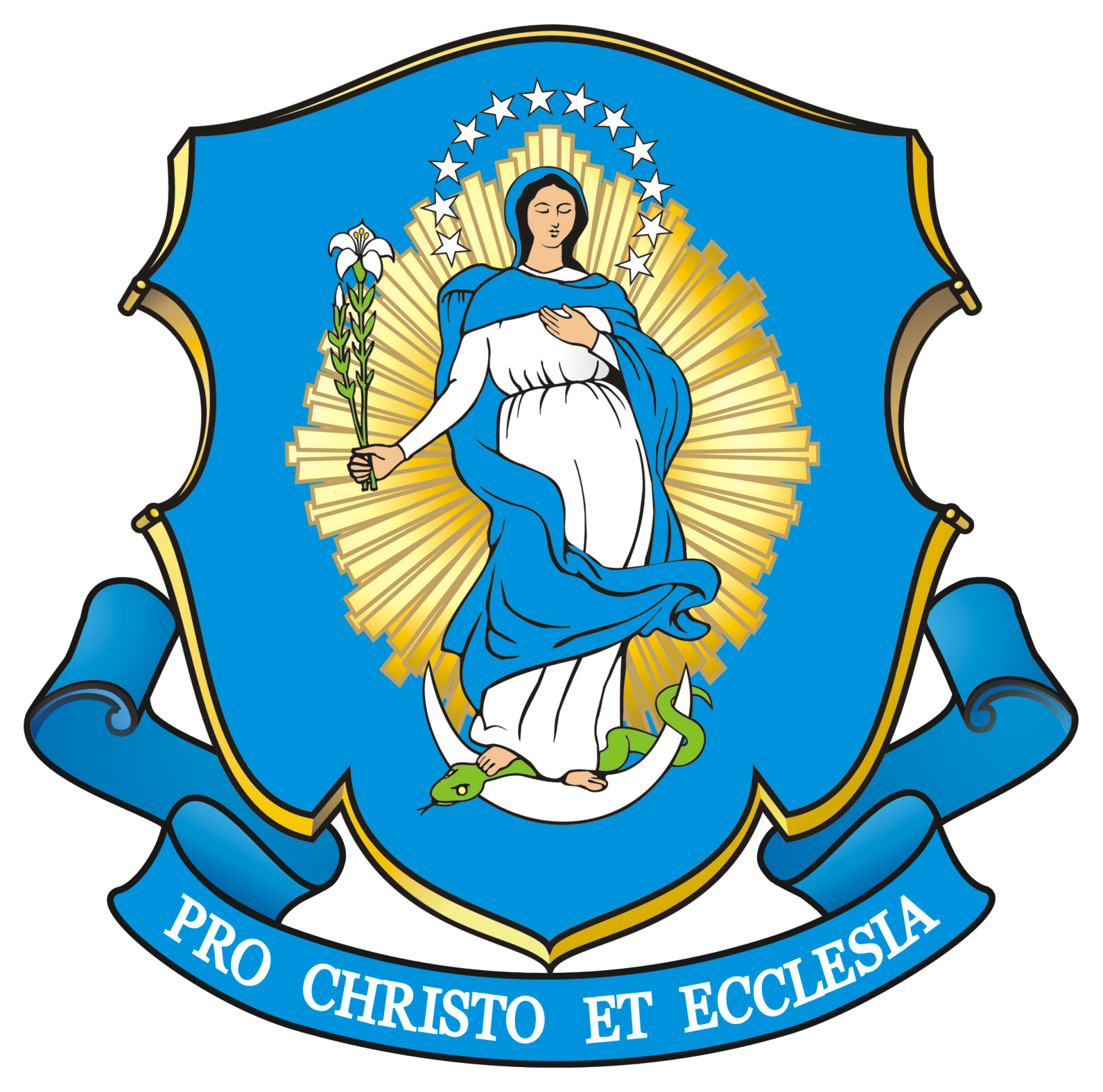 Congregation of Marian Fathers of the Immaculate Conception - Wikipedia