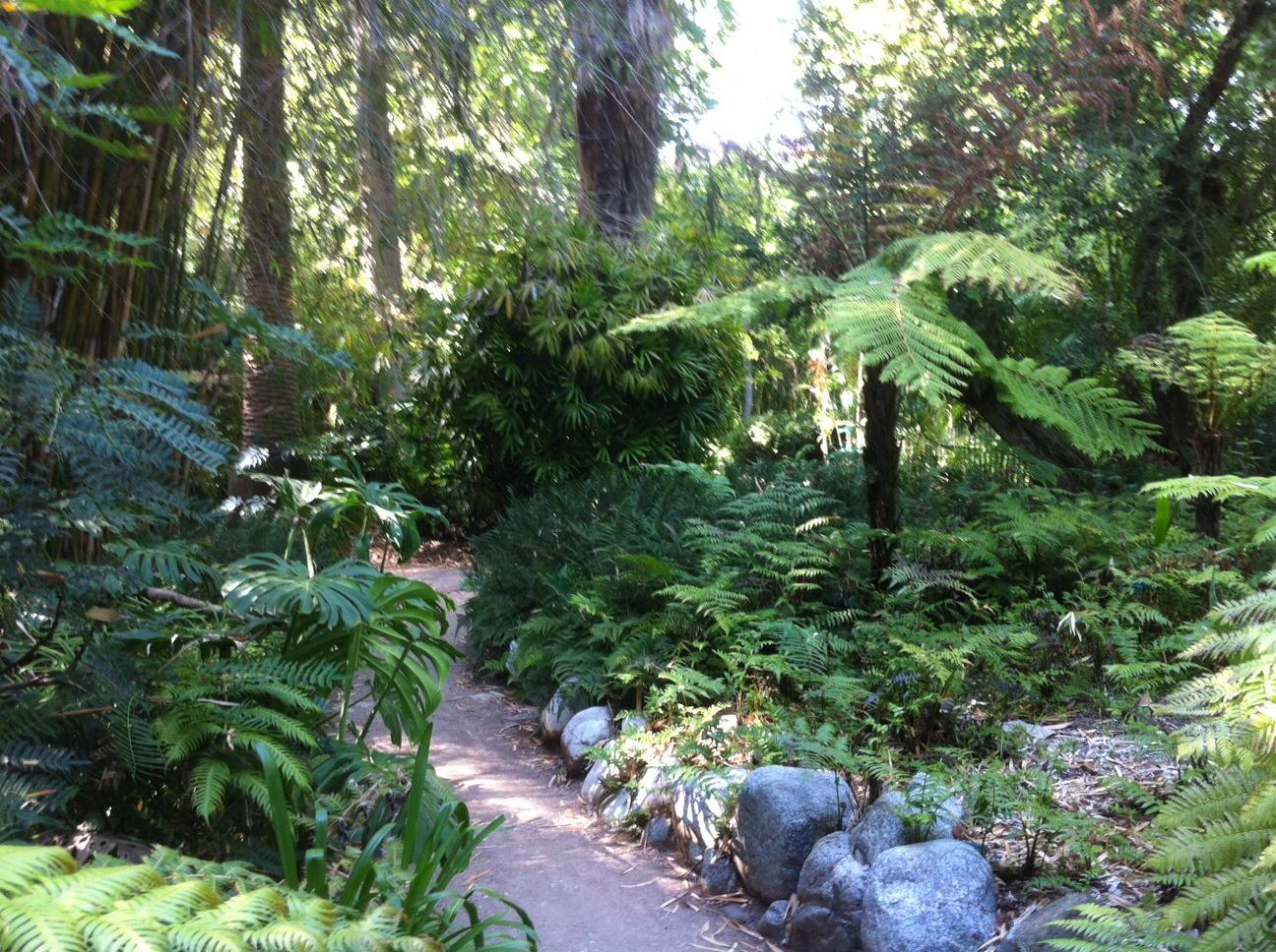 File:Mildred E. Matthias Botanical Gardens 06.JPG
