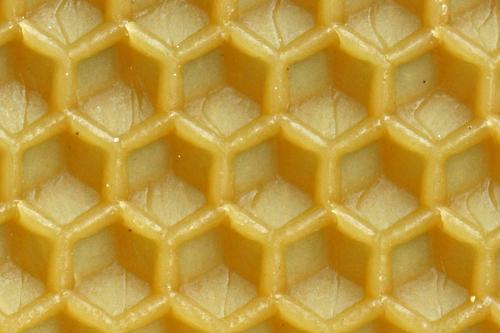 Mittelwand für Bienenwabe 81b