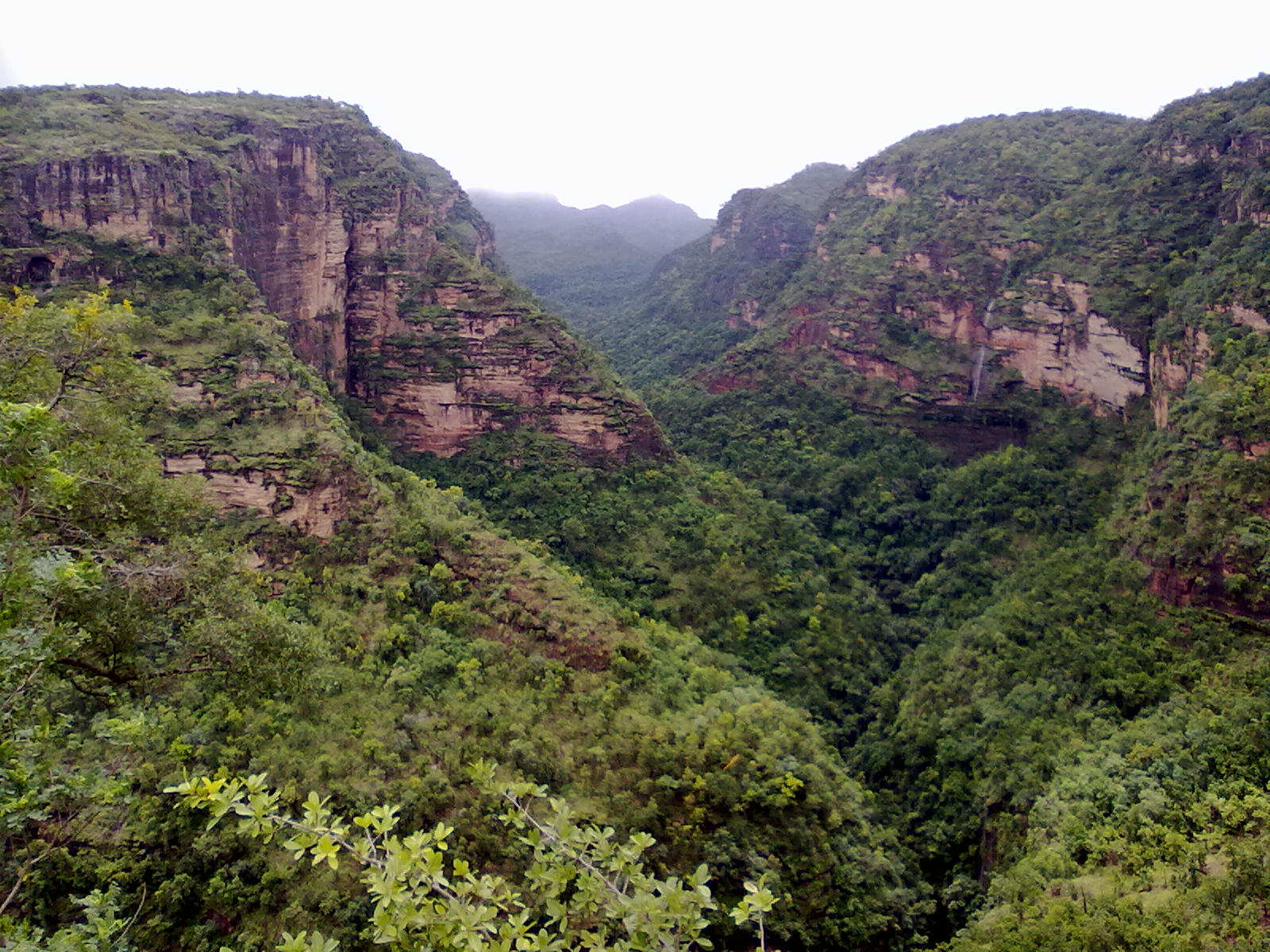 Pachmarhi India  City pictures : Pachmarhi valley Madhya Pradesh INDIA Wikipedia, the free ...