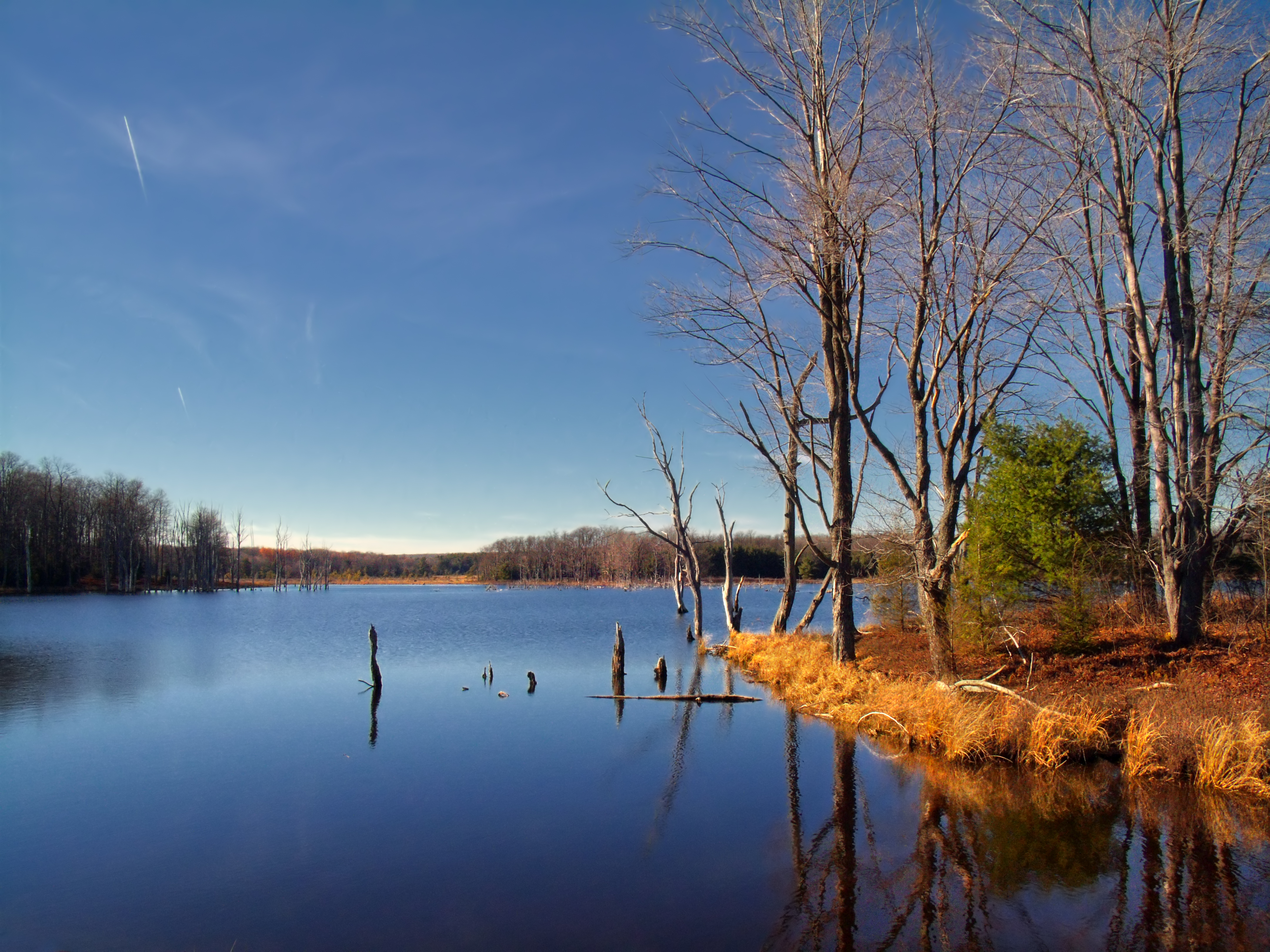 file quehanna wild area still jpg wikimedia commons