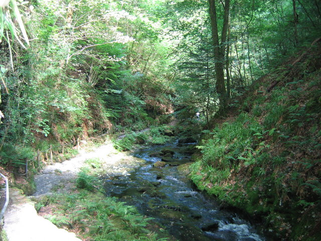 River Lyd, Lydford Gorge - geograph.org.uk - 743555