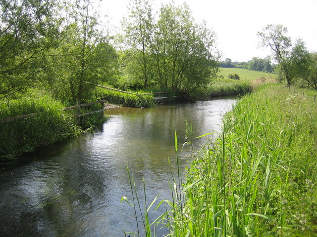 River Thame near Nether Winchendon - geograph.org.uk - 183586