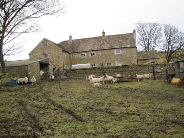 File:Stotley Hall, Teesdale - geograph.org.uk - 1716963.jpg
