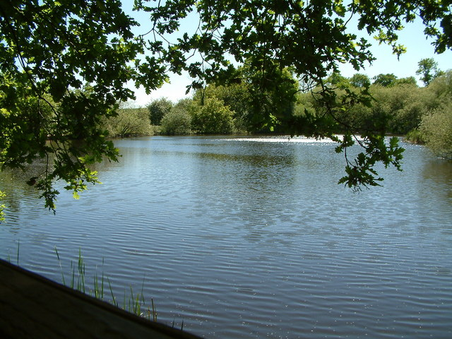 The Lake, Thorndon Country Park, Brentwood - geograph.org.uk - 420889