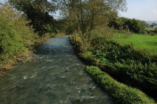 The River Evenlode, Ascott-under-Wychwood - geograph.org.uk - 990283