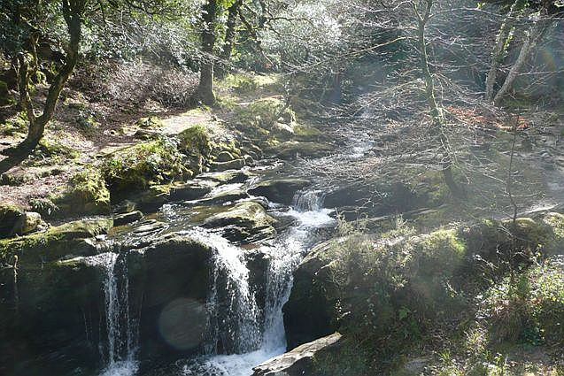 Waterfall on Owengarriff River - geograph.org.uk - 777094