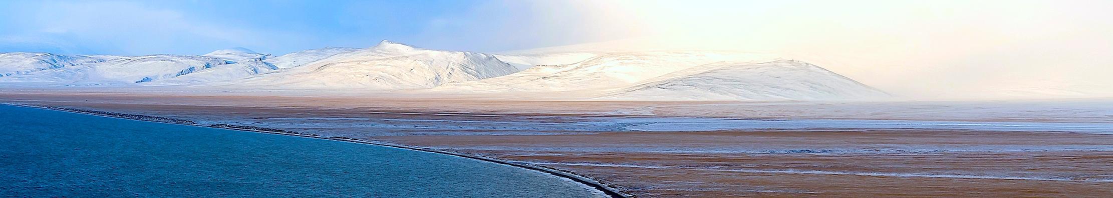 Isla Wrangel, Rusia Ártica