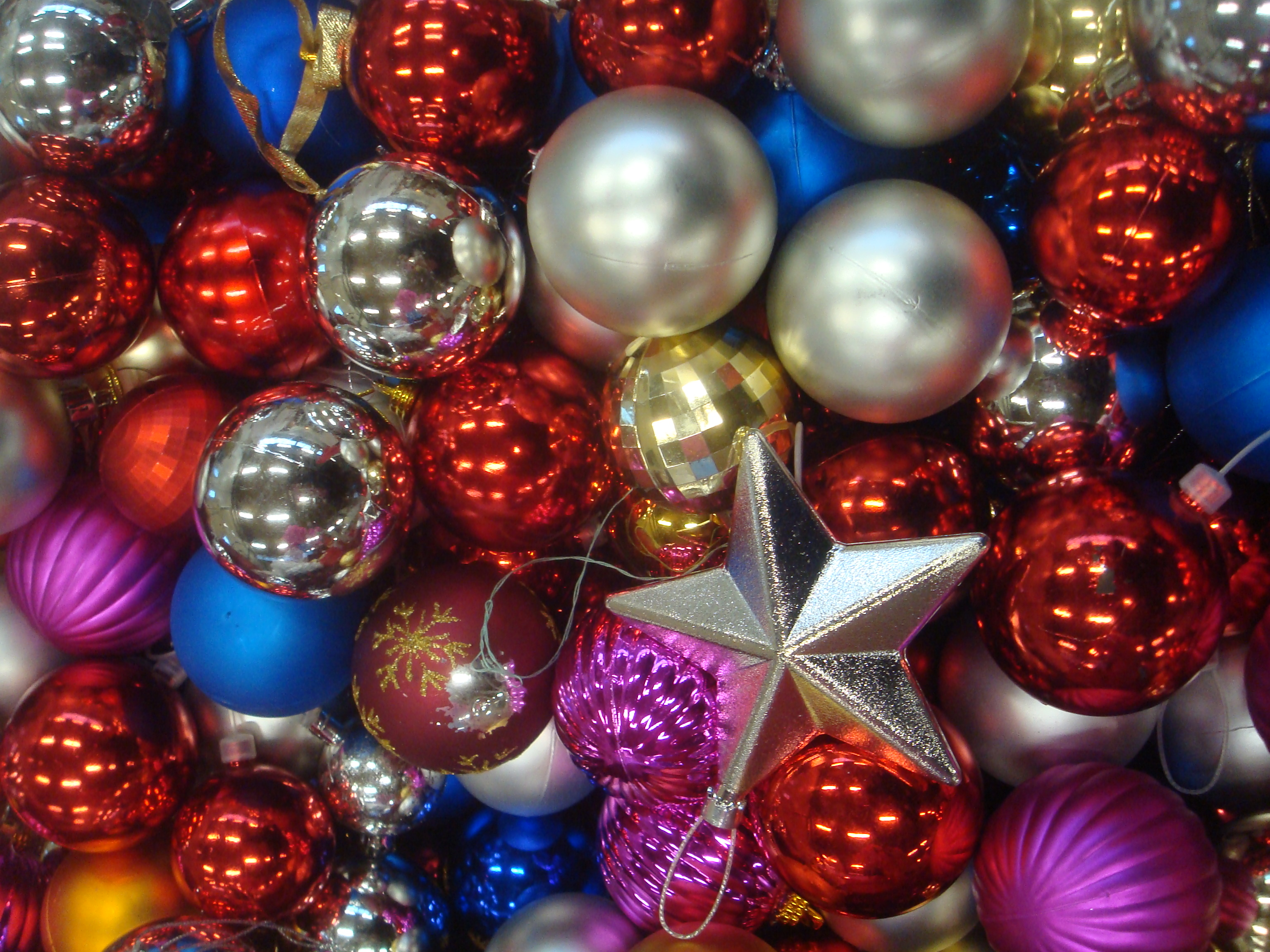 File:Xmas colors, 2013 (photo by David J).jpg - Wikimedia ...