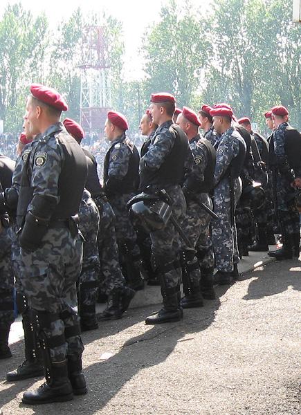 Файл:Беркут Украина 002.jpg