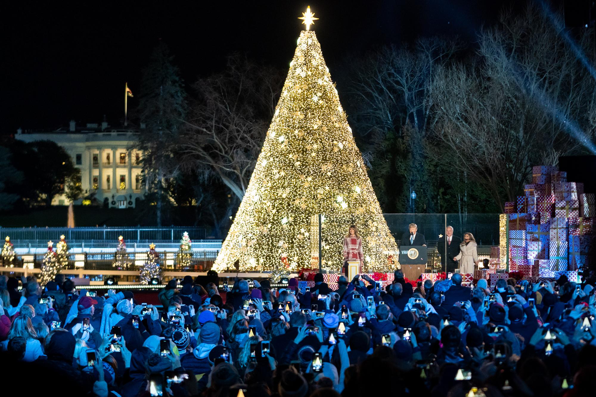 Watch The National Christmas Tree Lighting 2021