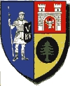 Alba county coat of arms.jpg