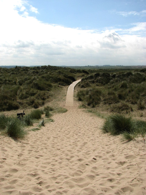 how to build a boardwalk path