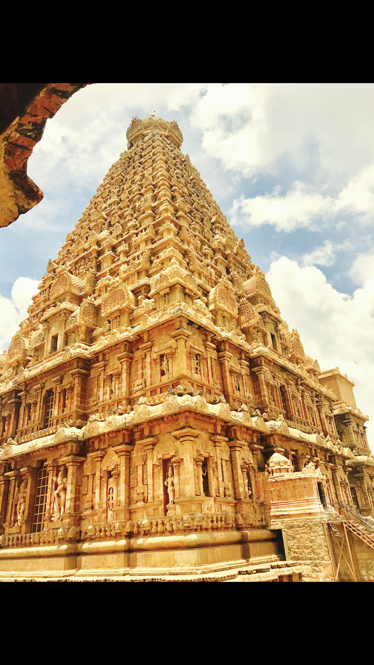 Chakadihi Goatsucker Brihadeeswarar_Temple