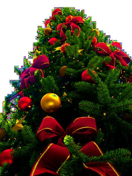 File:Christmas tree sxc hu, PNG transparency.png ...