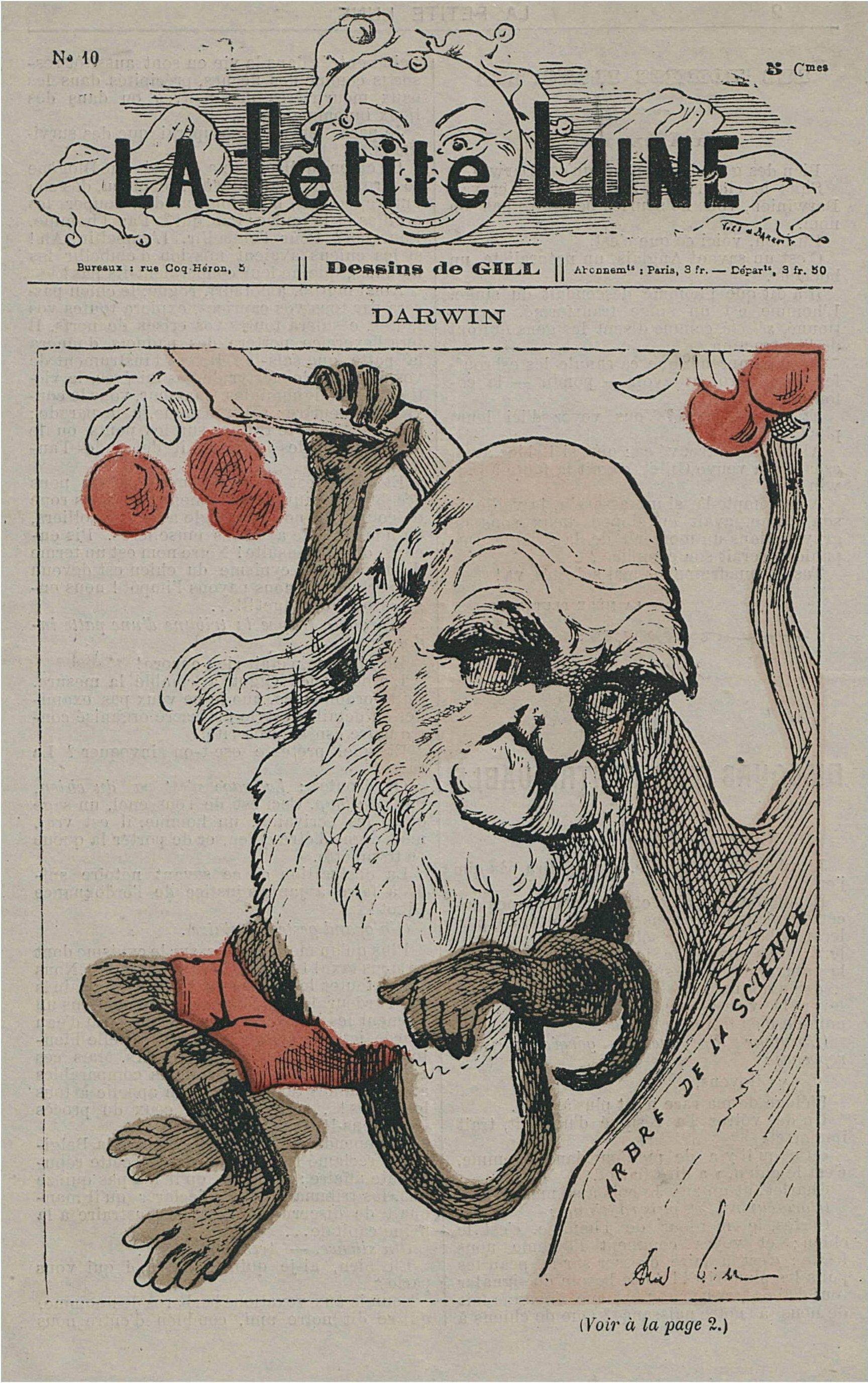 Darwin as monkey on La Petite Lune