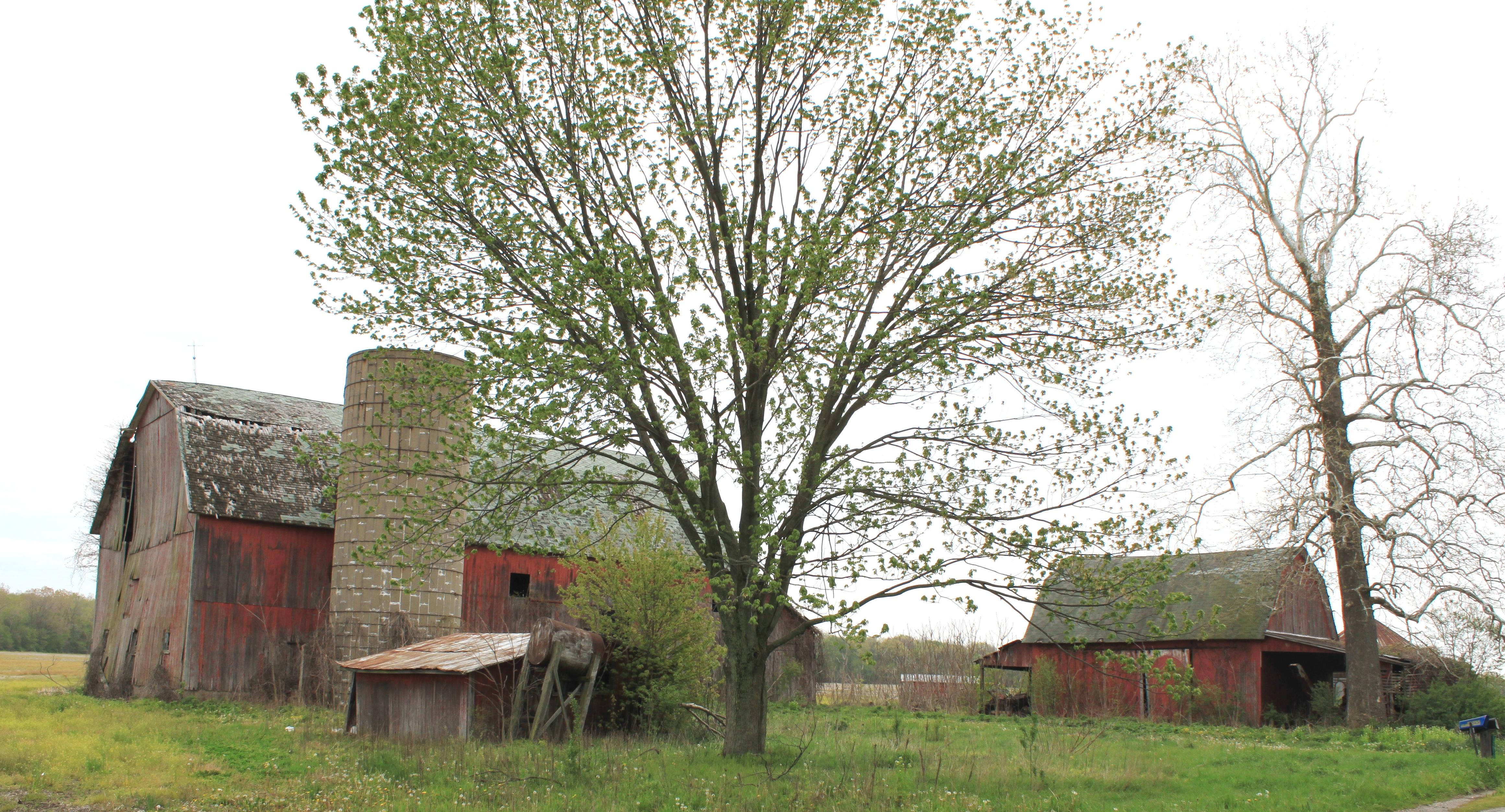 File:Dilapidated Barns York Township Michigan.JPG - Wikimedia Commonsyork township