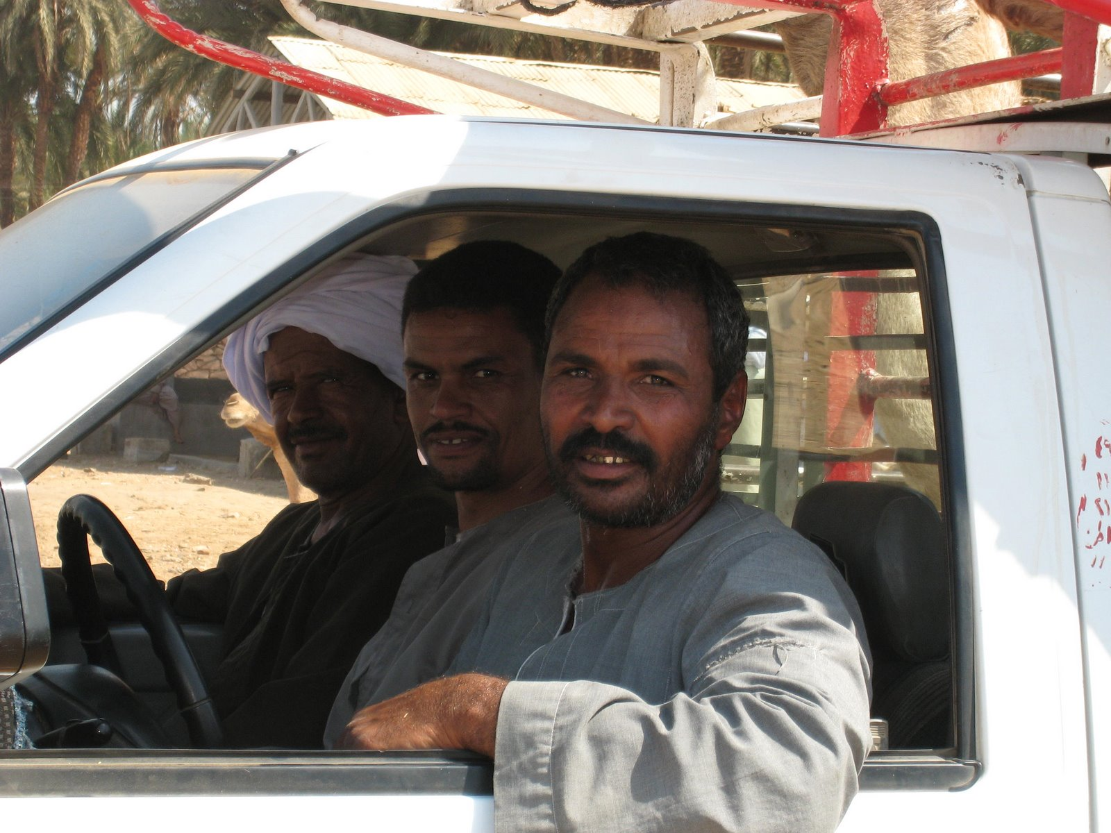 Description Egyptian men in car jpgEgyptian Guys