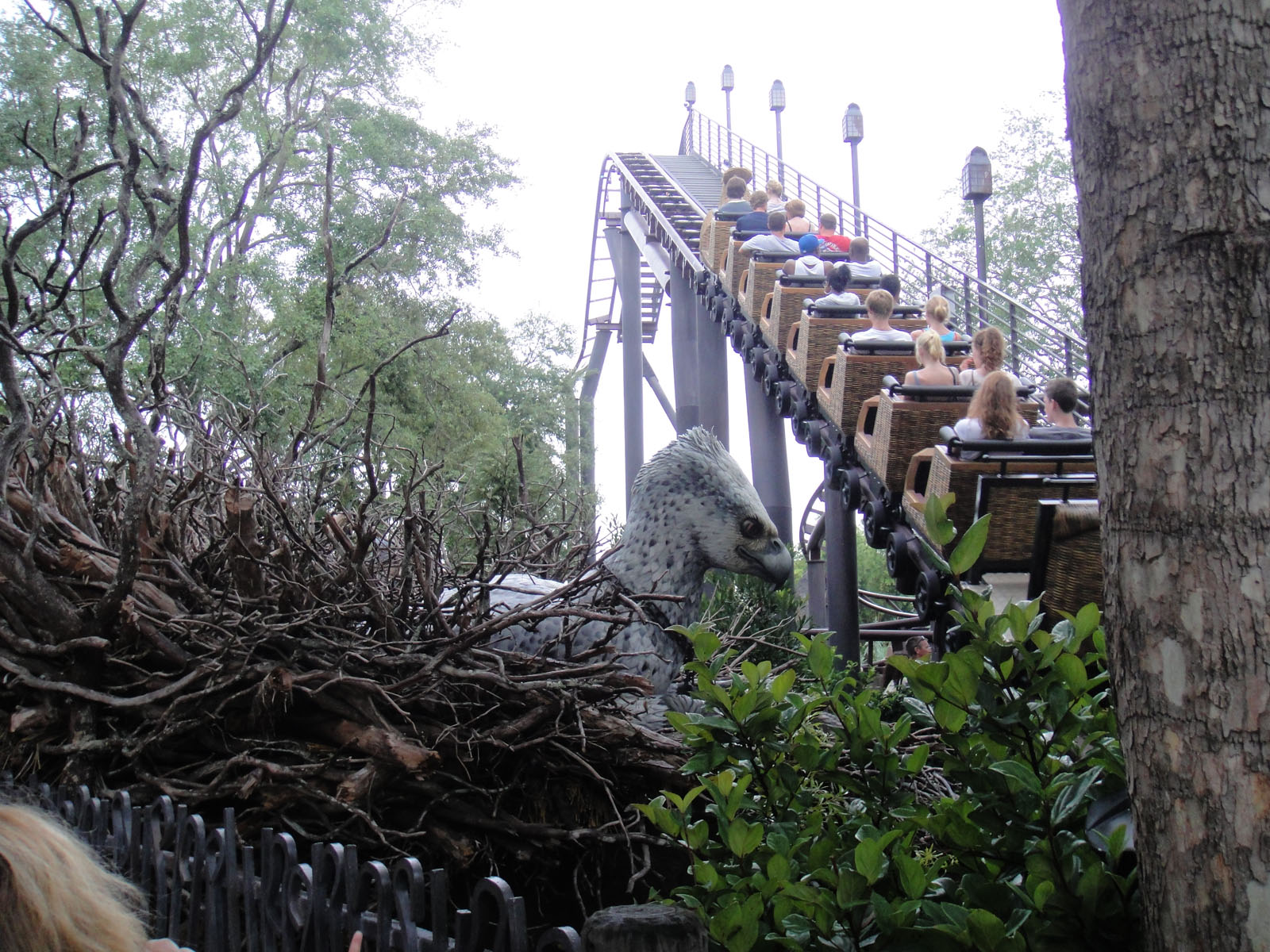 File:Flight of the Hippogriff at Islands of Adventure.jpg ...