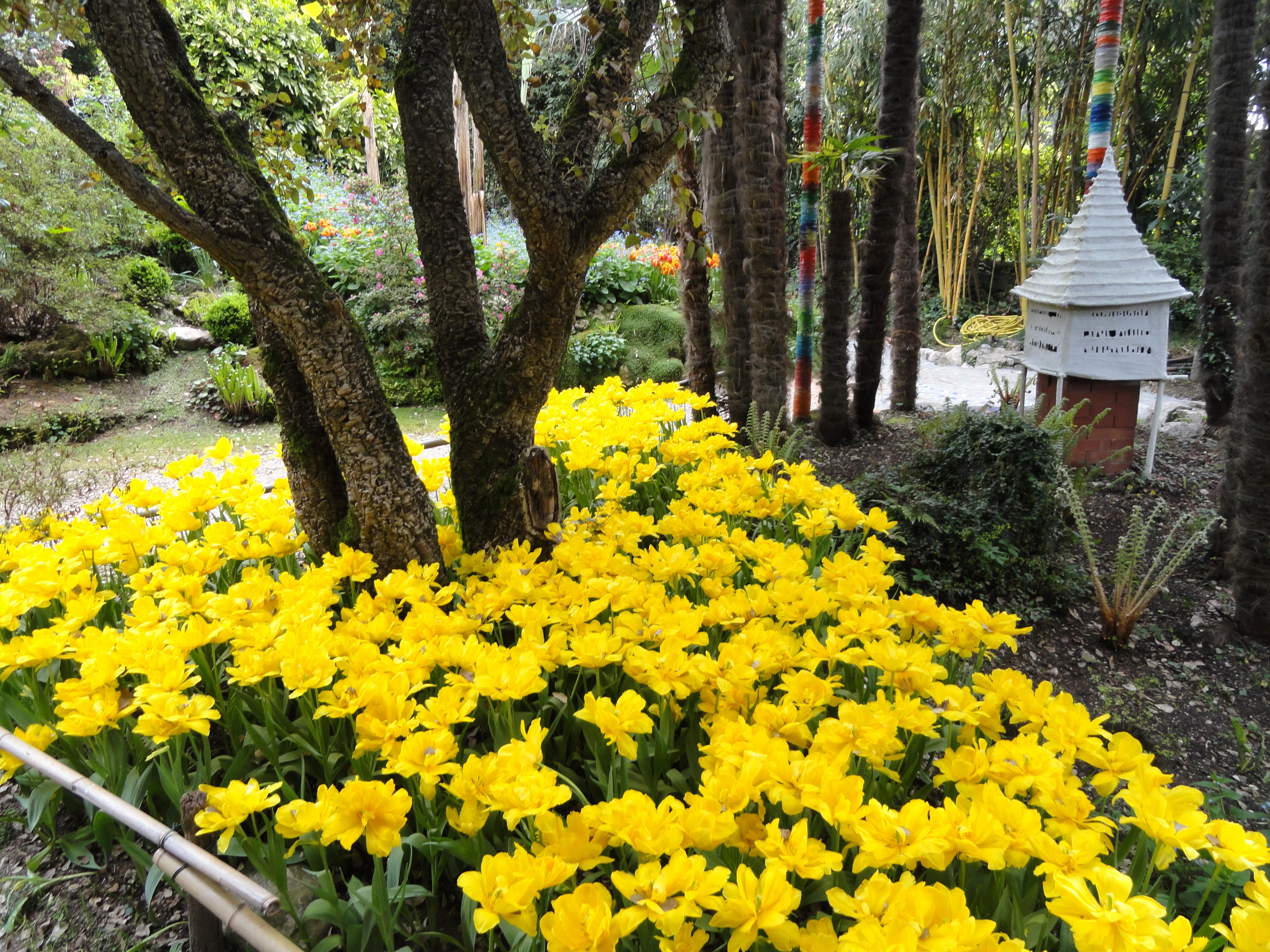 Set Da Giardino In Bamboo.Giardino Botanico Fondazione Andre Heller Wikipedia