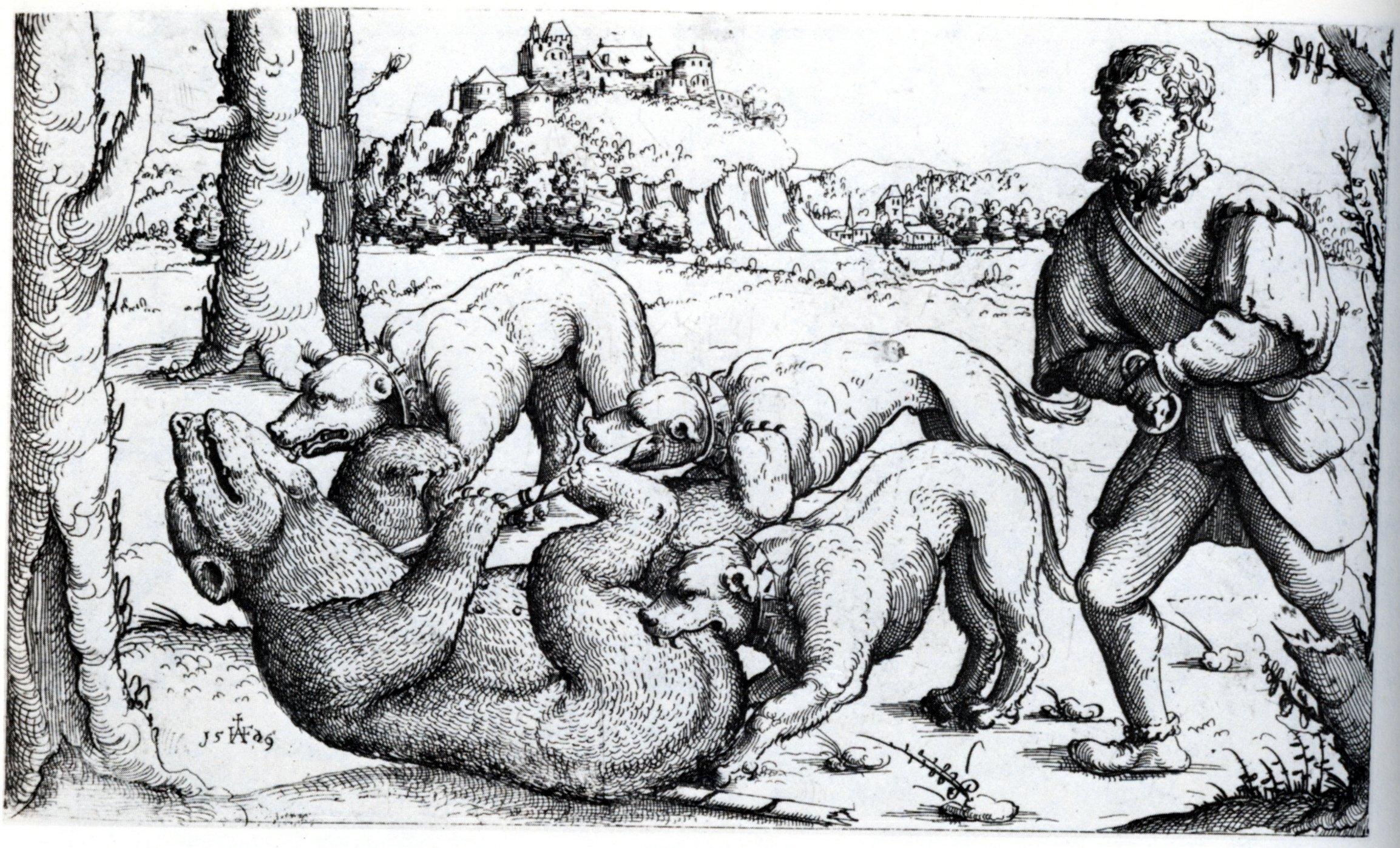 file hirschvogel bear hunt jpg wikimedia commons