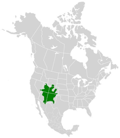 Range map of Colorado Hairstreak butterflies