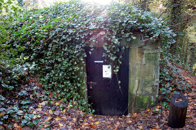 Ice house in Dalkeith Country Park - geograph.org.uk - 1589866