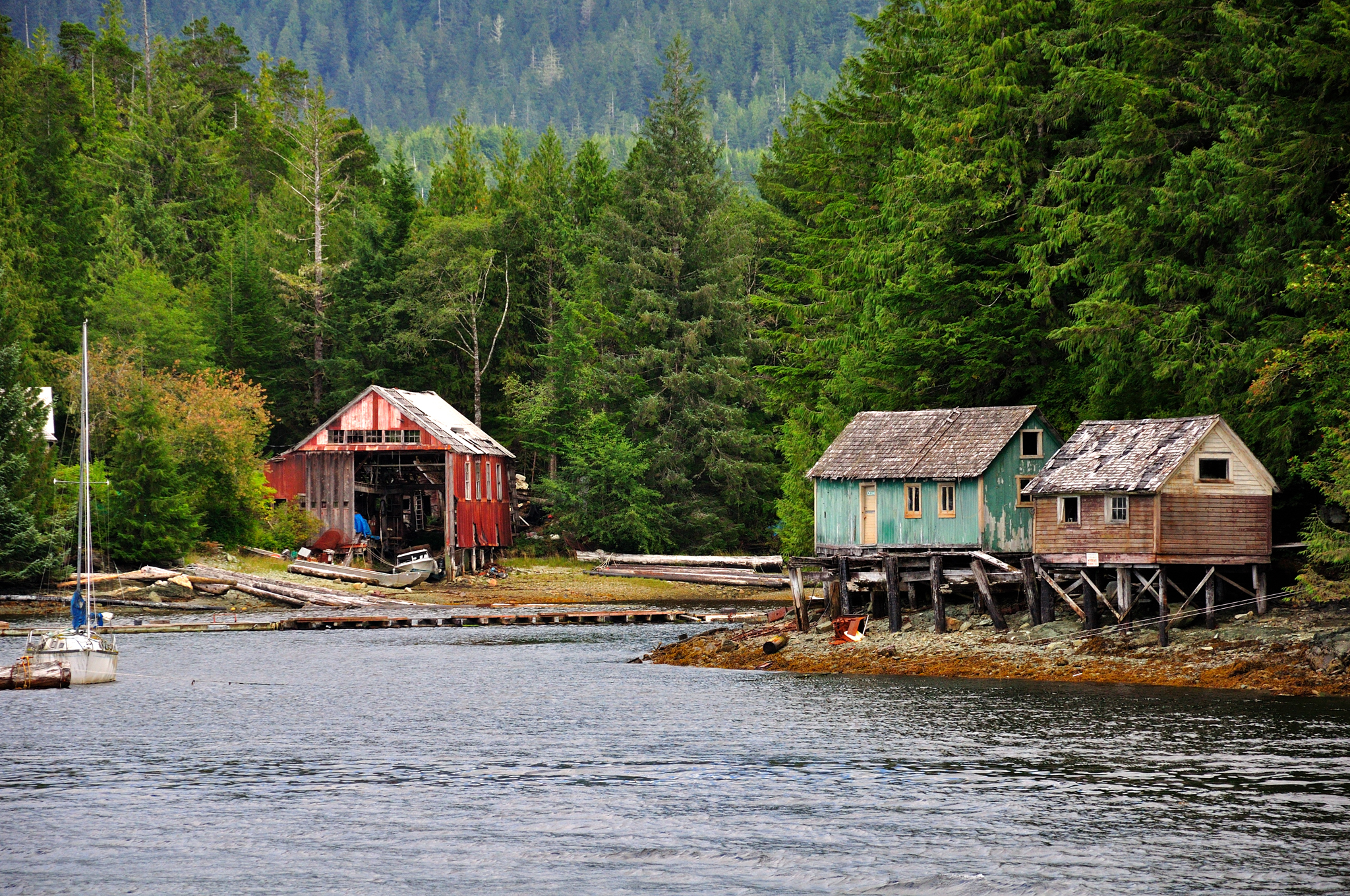 Image gallery ketchikan island for How to get a homestead in alaska