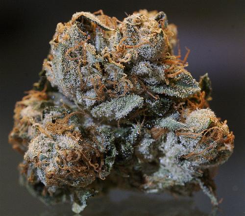 Kush (cannabis) - Wikipedia