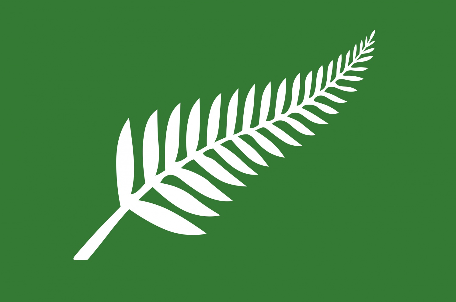 filenz flag design silver fern green by roger clarkejpg - Flag Design Ideas