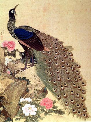 File:Okyo Peacocks and Peonies.jpg