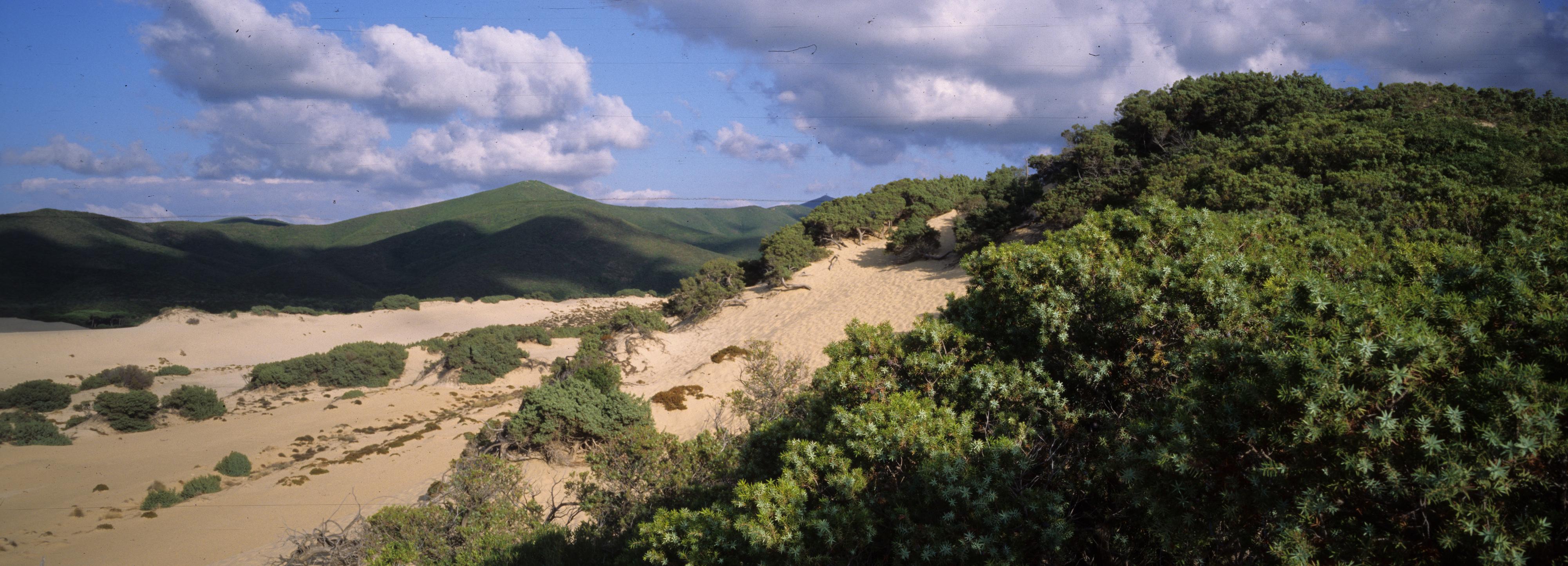 Anche l 39 italia ha il suo deserto ed e 39 in sardegna for Subito it arredamento sardegna