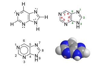 Structure et représentation de la 9H-purine ou (3H-imidazo)[4,5-d]pyrimidine