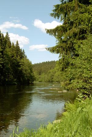 Der Fluss Regen
