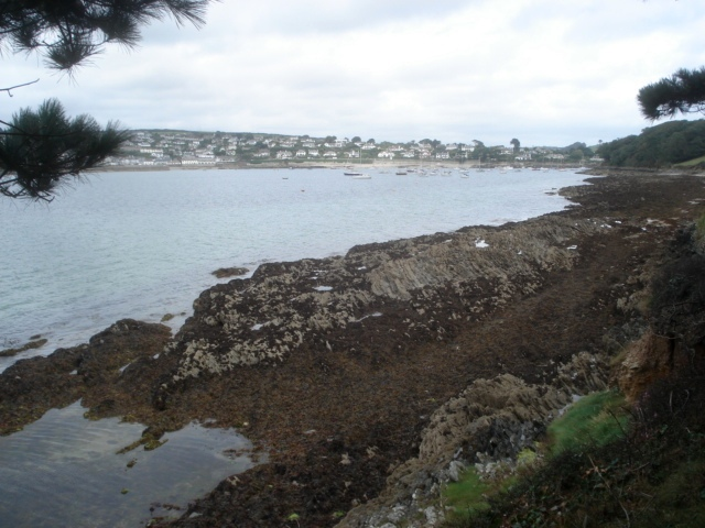 St Mawes Harbour - geograph.org.uk - 565053