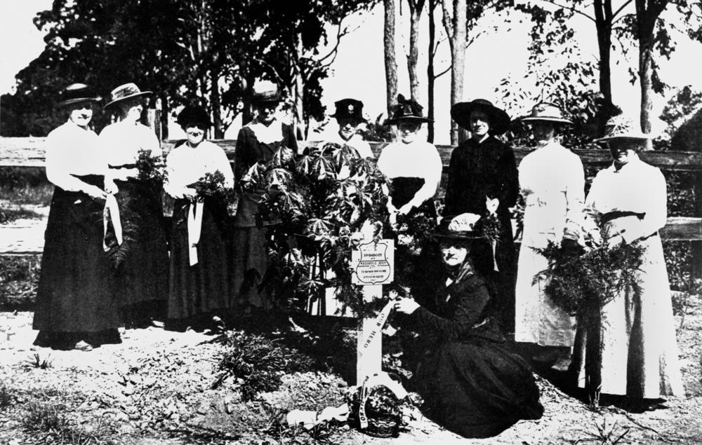 women contribute to world war 1 Anzac day commemoration comittee, world war 1, women's role and place  australian war memorial, women and war stories of women in wartime nora heysen.