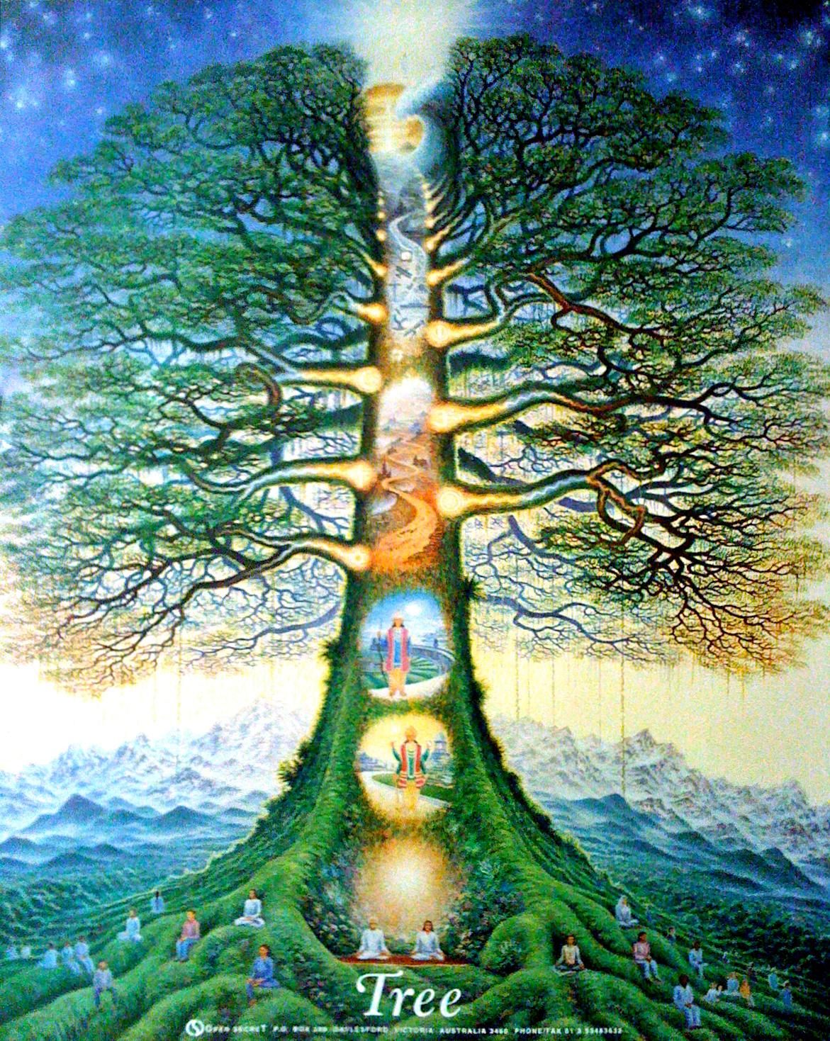 Tree Of Life · Metatrons Cube · The Garden Of Eden