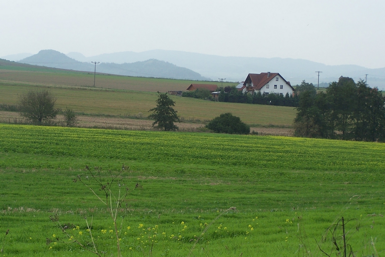 Lützenbachshof – Wikipedia