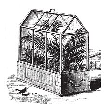 The Wardian case, a forerunner of the terrarium, helped protect   Victorian fern collections from the air pollution of the era.
