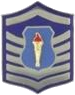 AFJROTC MSGT insignia.png