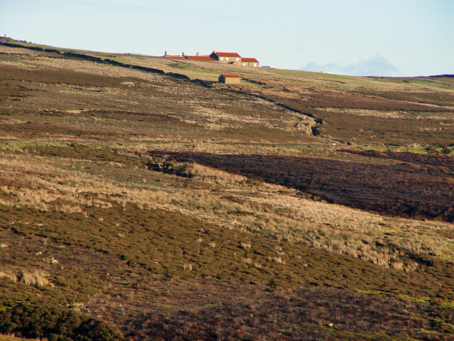Across the moors to the Lion Inn, Blakey - geograph.org.uk - 1061891