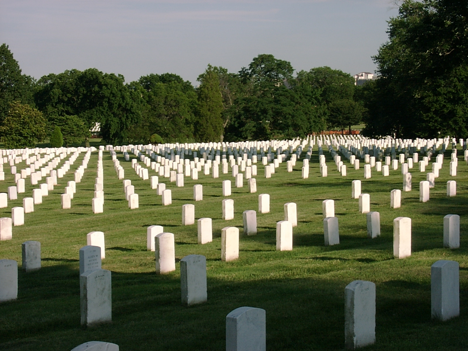 Arlington National Cemetery on an overcast day. Rows of white headstones extend across a green lawn.