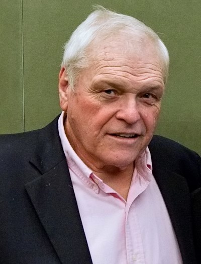 Image result for brian dennehy movies