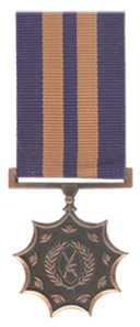 Bronze Medal for Merit