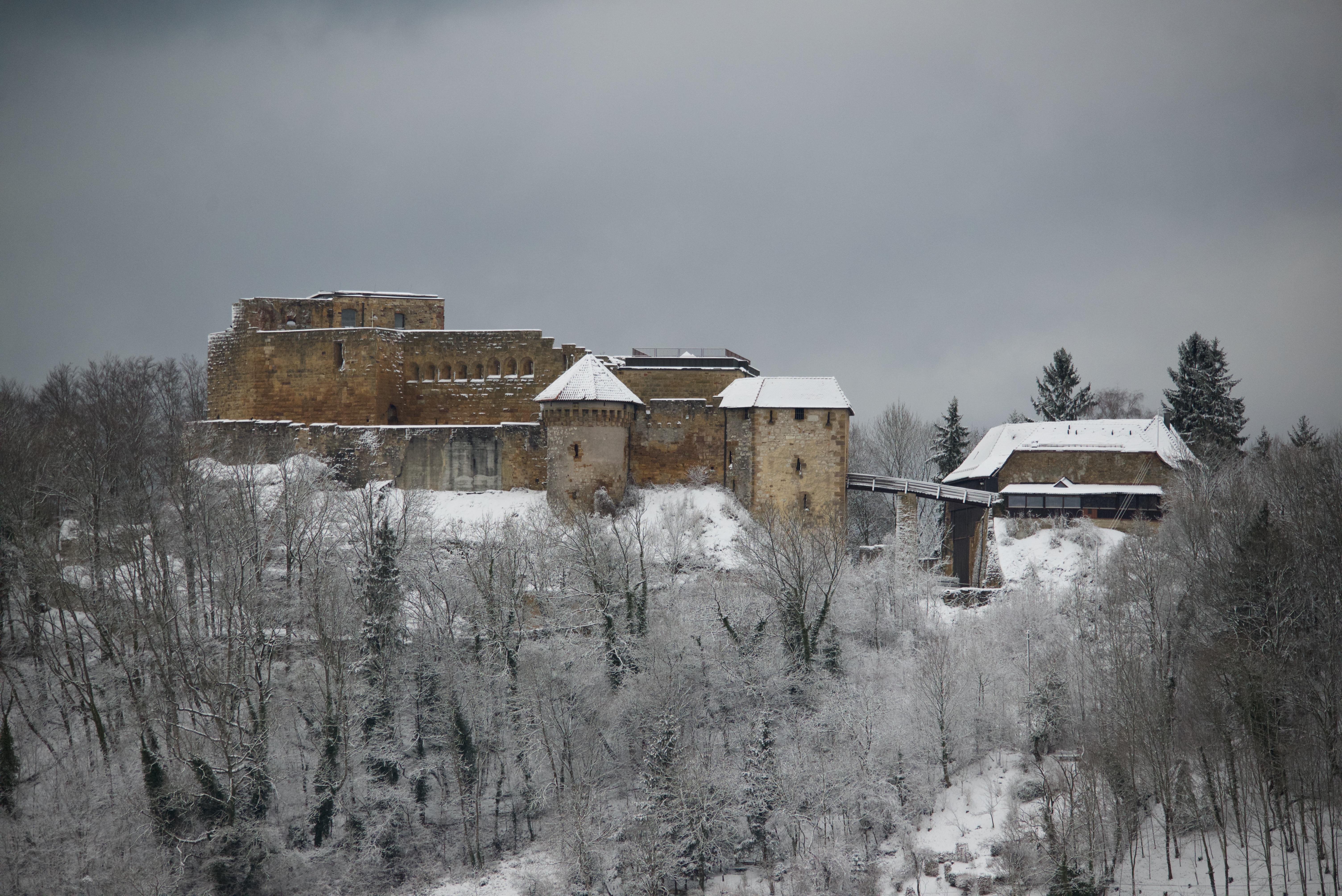 Die Ruine von Südosten aus gesehen