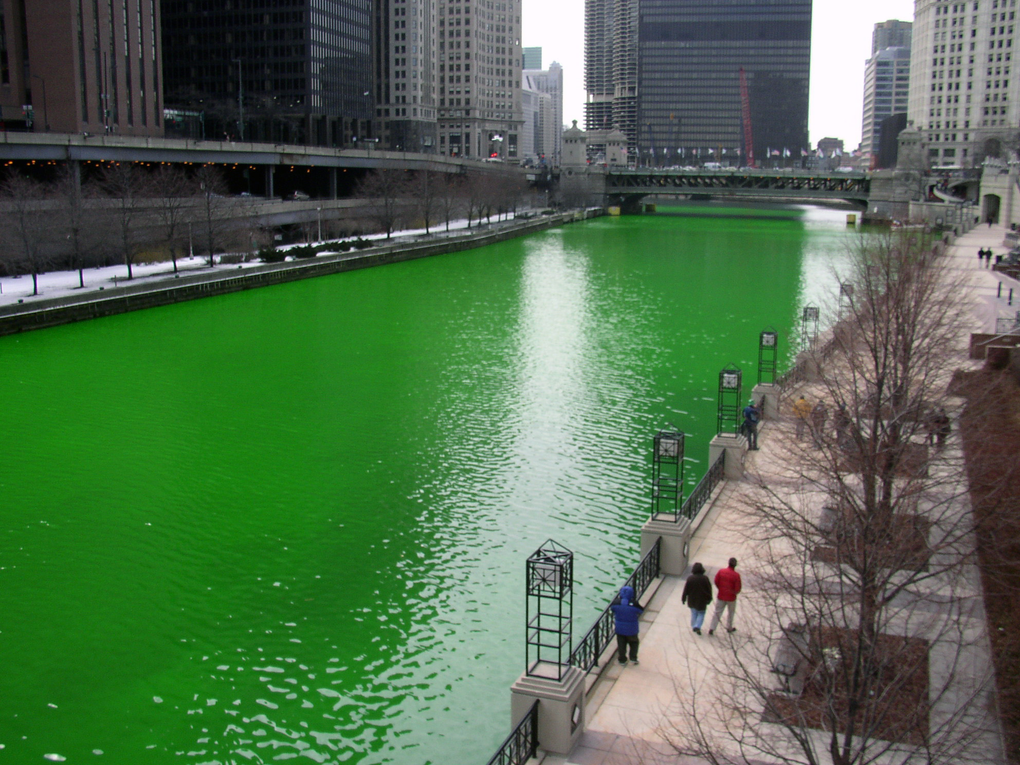 file chicago river dyed green focus on river jpg wikimedia commons