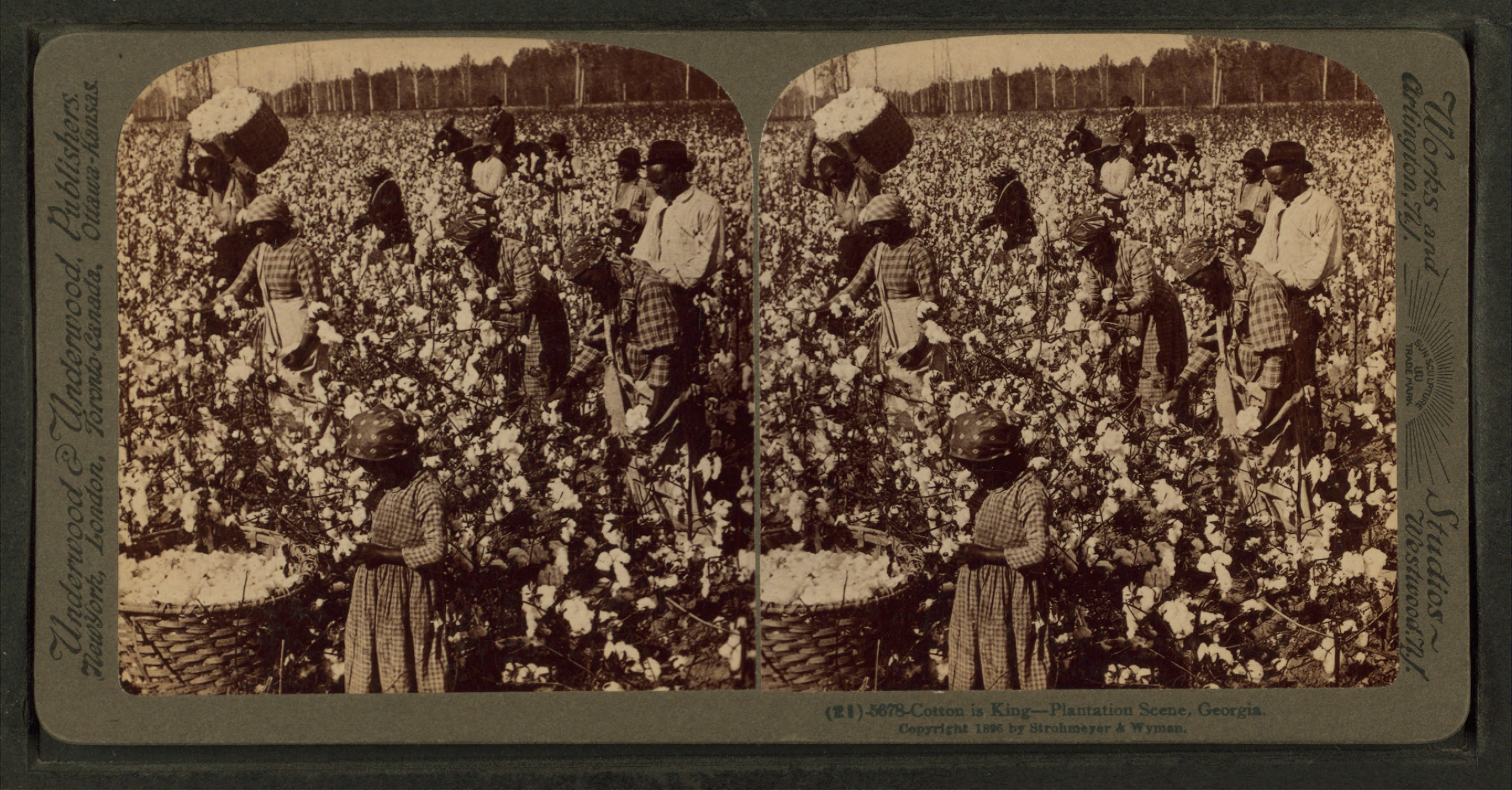 A plantation scene, Georgia.  New York Public Library Collection