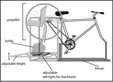 Datei:Cycleonium.jpg