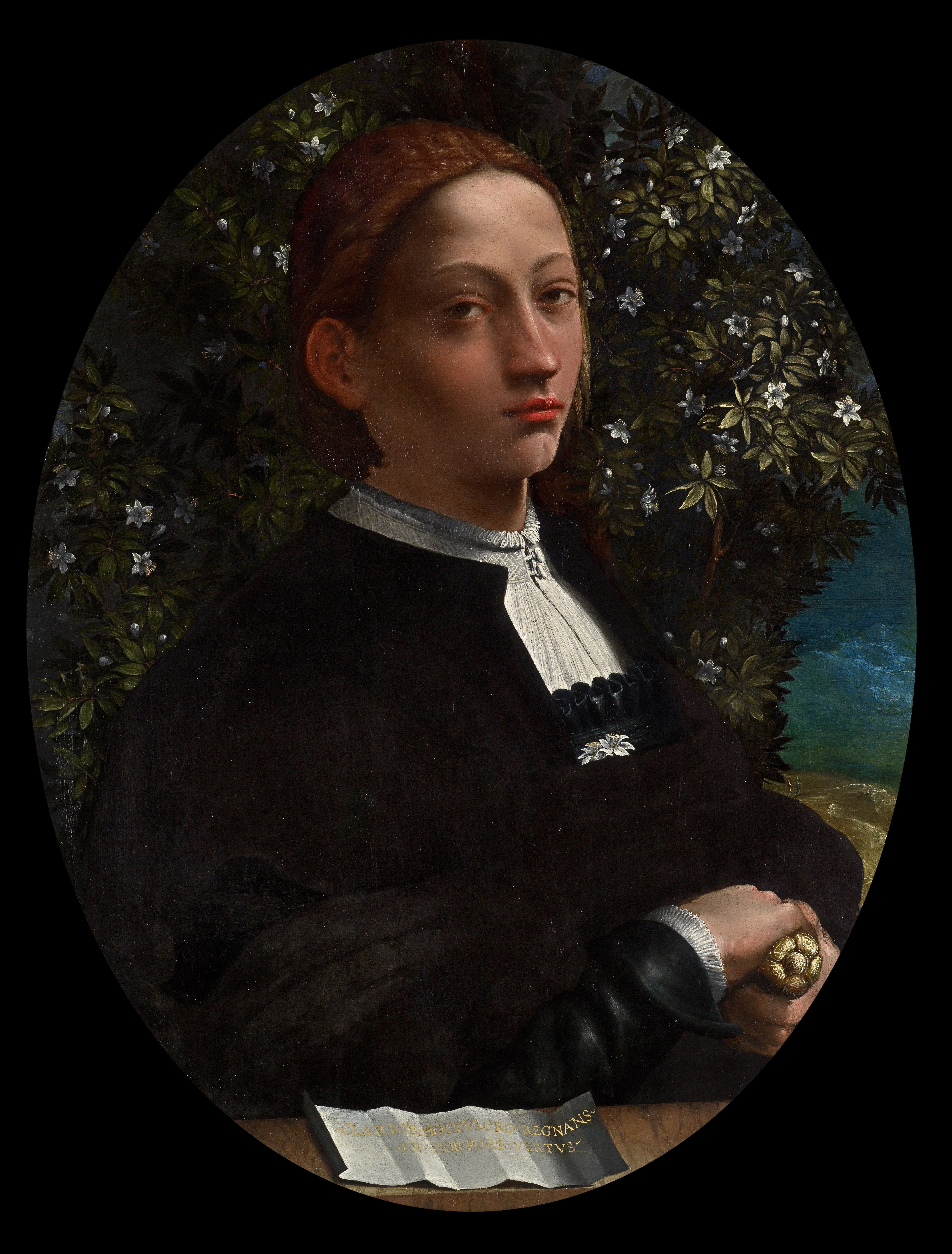 """The only confirmed Lucrezia portrait painted from life (attributed to [[Dosso Dossi]], c. 1519, [[National Gallery of Victoria]]<ref>[https://www.ngv.vic.gov.au/media_release/ngv-solves-mystery-of-renaissance-portrait/ """"NGV Solves Mystery of Renaissance Portrait""""] (26 November 2008), NGV. Retrieved 4 June 2020.</ref>)"""