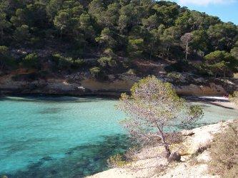 Playa El Mago, Mallorca
